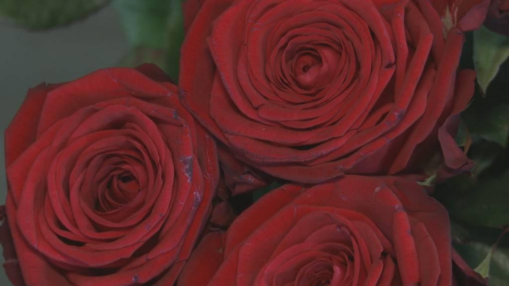 Deine Liebeserklärung am Valentinstag im Radio
