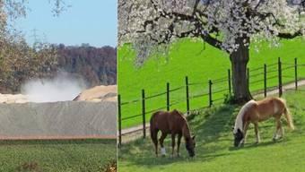 Der Baustaub (links, auf Facebook gepostet von Chantal Wicker) bedroht die Pferde des naheliegenden Hofes (Symbolbild).