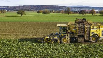 Die Landwirtschaft soll umweltfreundlicher werden, dafür aber gleich viel Geld erhalten wie heute. (Archivbild)