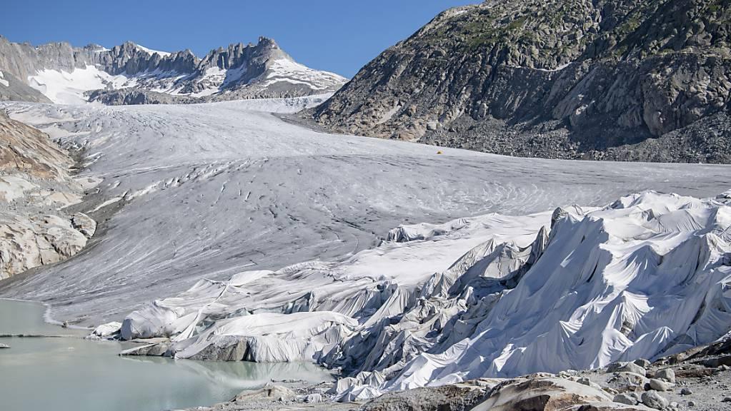 Viren in der Arktis und auf Alpengletschern ähneln sich laut einer neuen Studie überraschend stark. (Symbolbild)