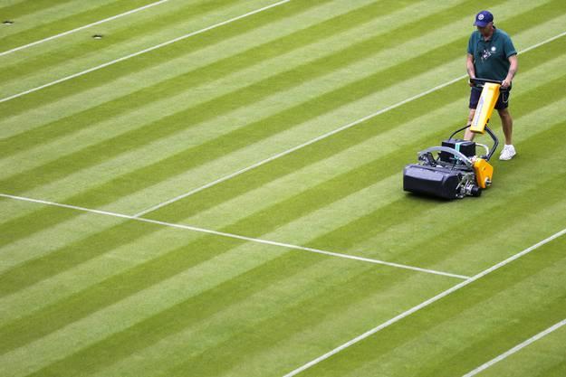 Rasen-Tennis steht für Eleganz. In der Schweiz gibt es keinen offiziellen Tennis-Rasenplatz. Dagegen existieren 3600 Hart- und Sandplätze.