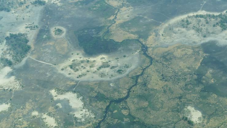 Das Okavango Delta in Botswana aus dem Kleinflugzeug, mit dem man von Maun in die Camps und von Camp zu Camp fliegt.