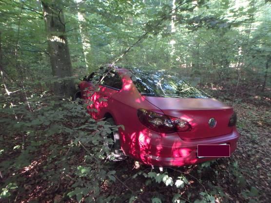 Erst der Aufprall gegen einen Baum im angrenzenden Wald stoppte das Auto.