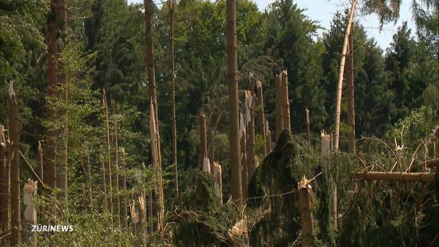 Millionen-Unwetterschaden in Stammheim