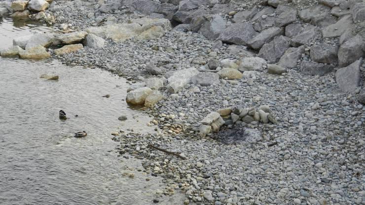 Bereits wird das Ufer in Beschlag genommen, Spuren einer Grillparty
