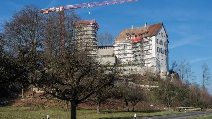Das Schloss Wildenstein