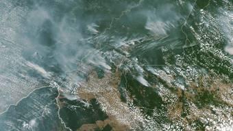 Rauchschwaden verraten die Waldbrände im Amazonasgebiet auf dieser Satellitenaufnahme der Nasa.