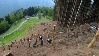 Die Berghilfe unterstützte letztes Jahr über 600 Projekte in den Berggebieten.