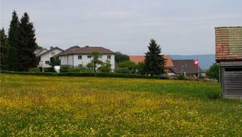 Das Grundstück für das geplante Alterszentrum befindet sich in Bergdietikon an der Schönenbergstrasse.
