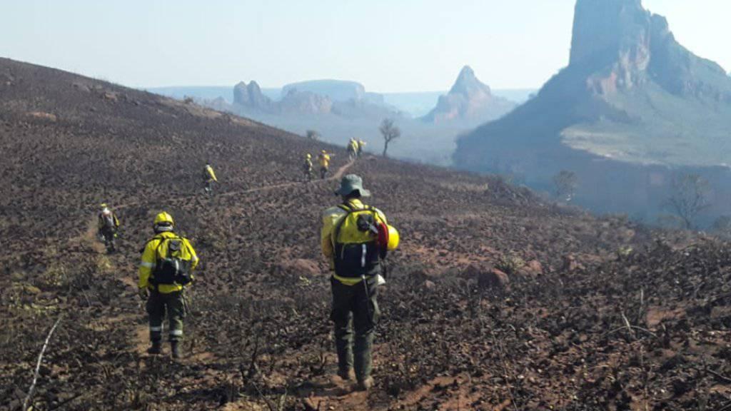 Waldbrandgebiet in der Provinz Santa Cruz in Bolivien. (Archivbild)
