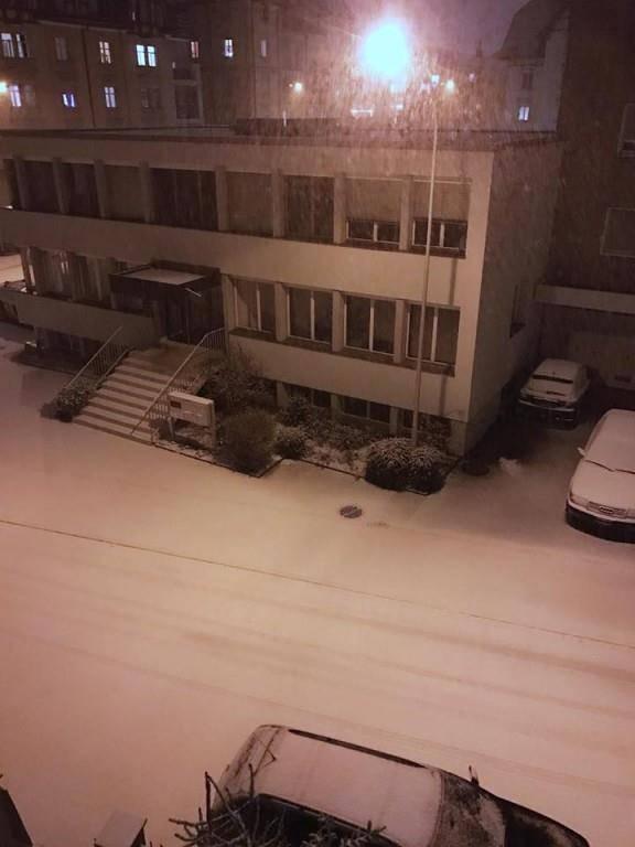 Glenn sieht Schnee in St.Gallen (© pd)