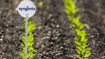 Der Basler Pflanzenschutz- und Saatgut-Produzent Syngenta fällt zum letztmöglichen Termin definitiv in chinesische Hände: ChemChina hat das Angebot insgesamt sieben Mal verlängert.