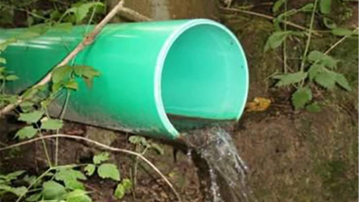 Zahlreiche natürliche Quellen wurden bei Entwässerungen drainiert. ZVG