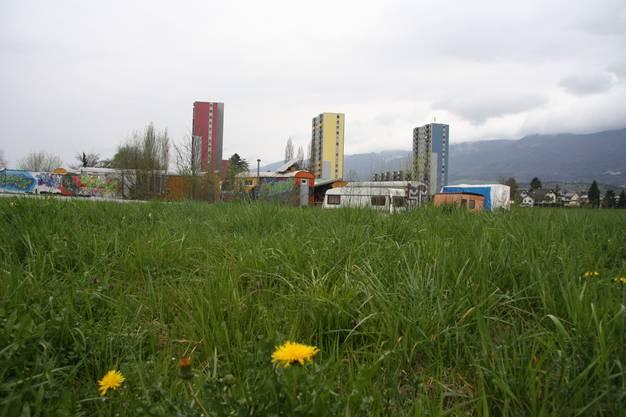 Der Frühling bringt ein Ulitmatum der Stadt.