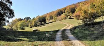 Naturschutzgebiet: Der Kantonale Richtplan hindert die Gemeinde Küttigen daran, das Gebiet Brunnenberg/Grüeblimatt in der Landwirtschaftszone zu belassen.