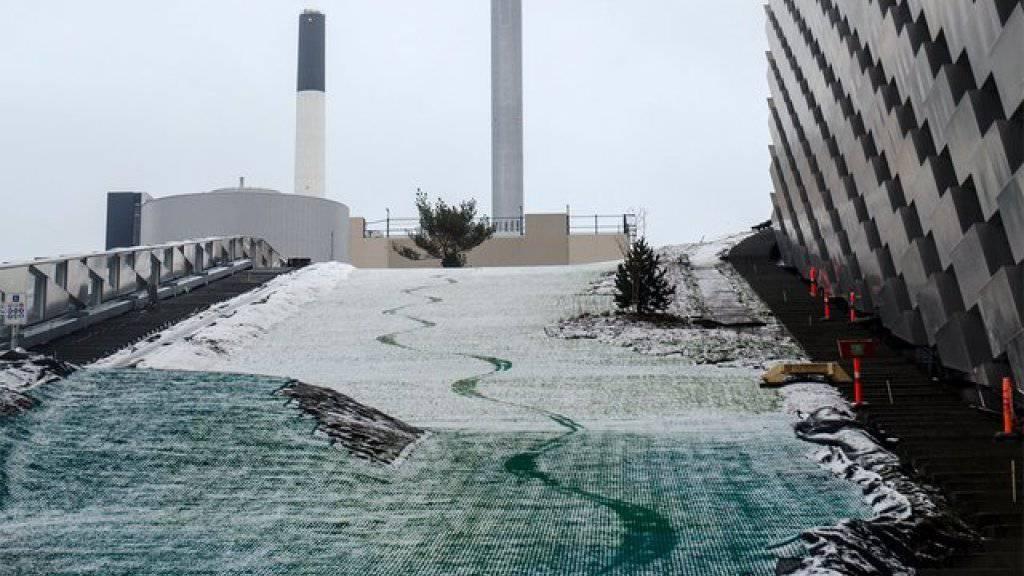Skifahrer und Snowboarder gleiten auf Kunststoffmatten die 450 Meter lange Abfahrt hinunter.