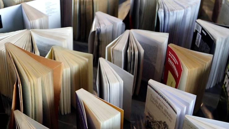 Nur dank einem vielfältigen Angebot an literarischen Werken kann das Spektrum der Bevölkerungssegmente gut abgebildet werden. KEYSTONE