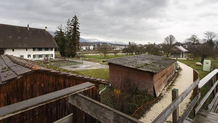 Es geht um die Zukunft des Areals zwischen Henzihof und Lusthäuschen.