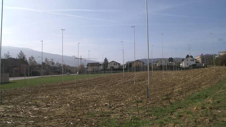Auf dem an die Kantonsstrasse grenzenden Areal sollen 16 Häuser Platz finden (pel)