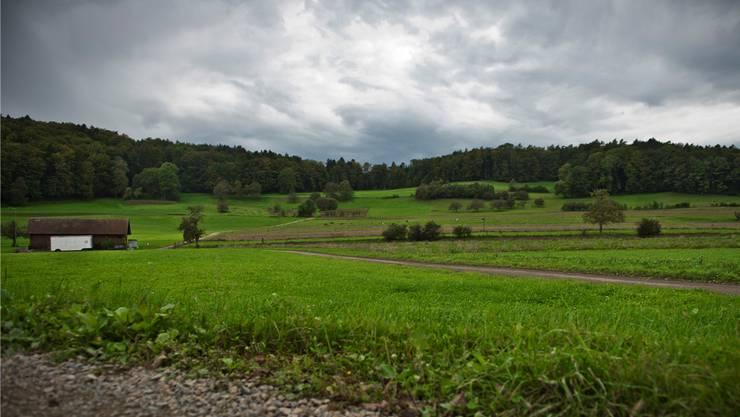 Die landwirtschaftliche Nutzfläche hat deutlich abgenommen.