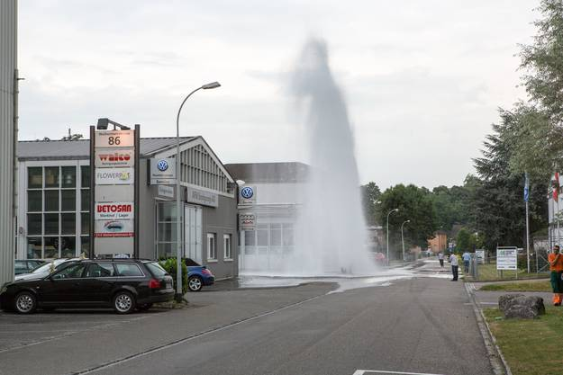 Wasser-Fontäne in der Telli Aarau