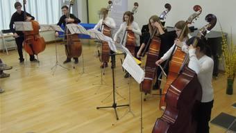 Sieben junge Kontrabassistinnen und Kontrabassisten zeigen – als «Die Kontras» – ihr Musiktalent.