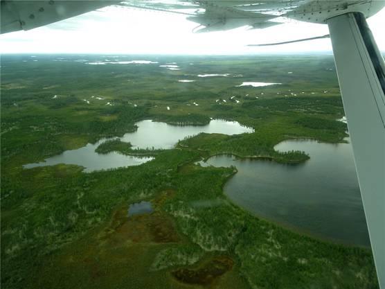 Beim Blick aus dem Flugzeug wird klar, dass das Kanu das passende Fortbewegungsmittel für diese Region ist.