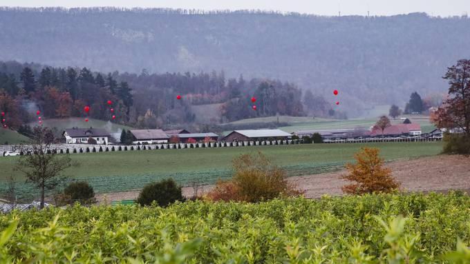 Aktion gegen die Deponie Steindler: Die Ballone zeigen die Höhe des Erdbodens an, wenn die Deponie wieder geschlossen wird.
