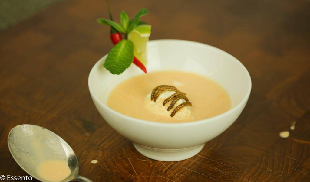 Ein leckeres Süppchen mit Mehlwurm-Beilage (© essento)