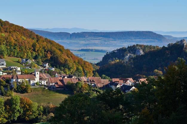 Blick zum Schwarzwald von oberhalb Grindel