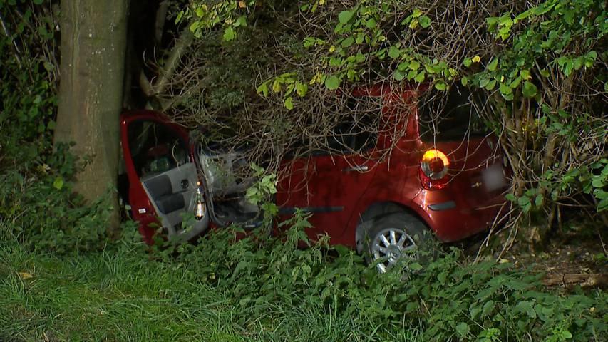 Dottikon (AG): 25-jähriger Autofahrer prallt in Baum