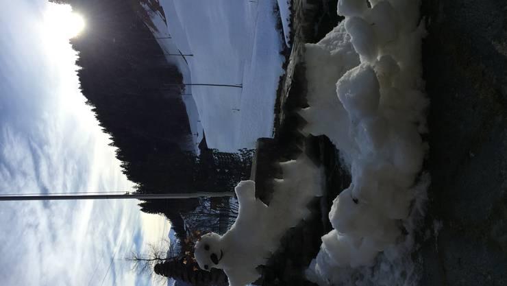 Dieser Schneemann flüchtet vor der warmen Frühlingssonne...