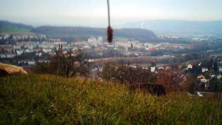 Ein Blick auf Basel - mal anders.