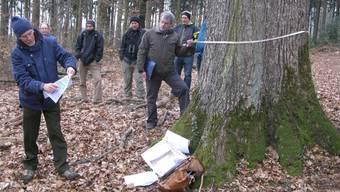 Peter Kaiser und Jürg Schlegel beim Messen des Stammumfangs der riesigen Eiche.