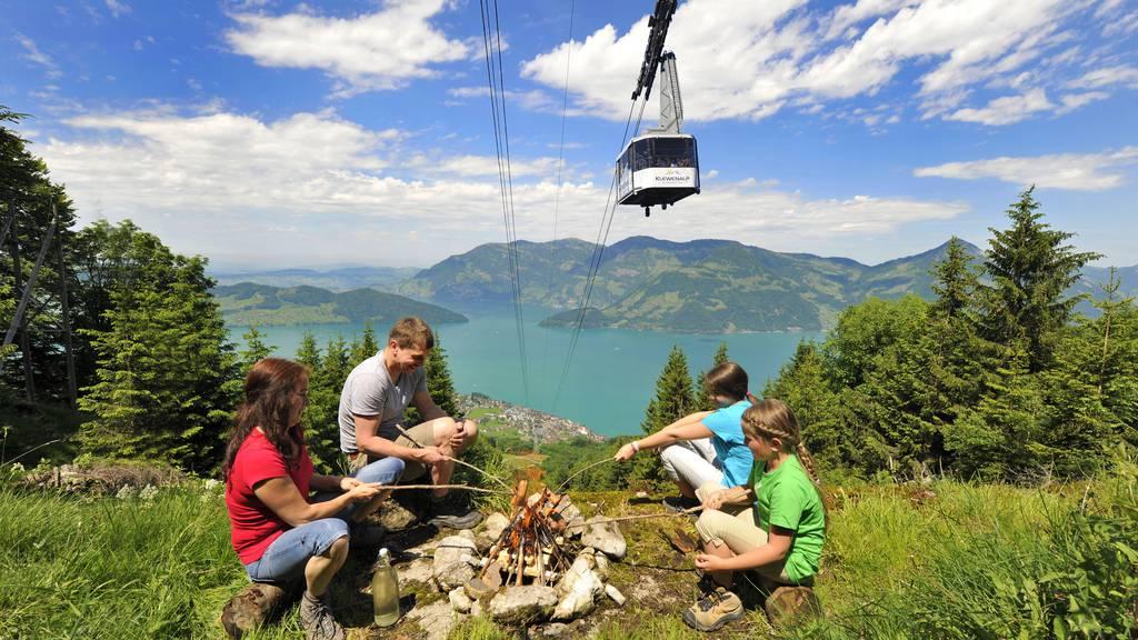 Freizeittipp: GOLDI-Familiensafari
