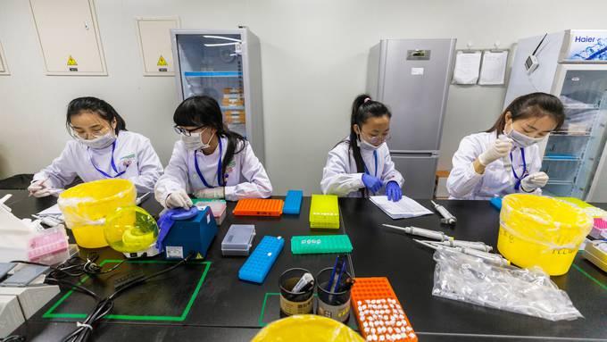 DNA-Forscher an der Arbeit in einem von Chinas modernsten Gen-Editing-Labor in Nanjing in der Provinz Jiangsu.