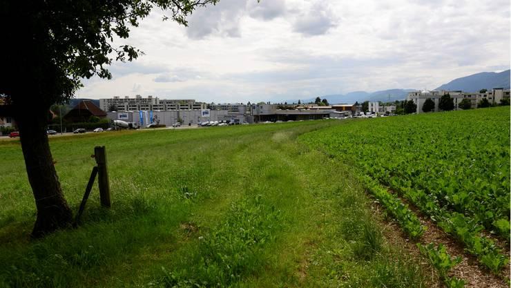 Bellach und Langendorf sollen gemeinsam betrachtet werden.