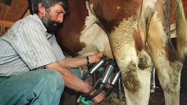 Zuviel Milch drückt den Preis (Archiv)