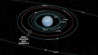 Ein NASA-Diagramm zeigt die Lage des Neptun-Monds an
