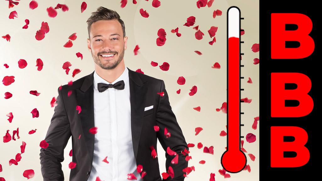 Bachelor Blödheits Barometer