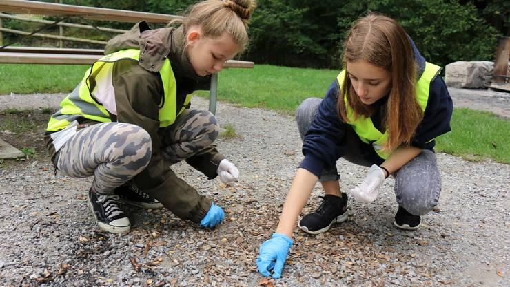 Julia (13) und Andrina (15) von der Jubla Dietikon klauben von Hand Zigarettenstummel und Pistazienschalen vom Boden auf.