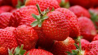 Maria Brehmer: «Dass Erdbeeren Jahr für Jahr als Sündenbock für unser globalisiertes Konsumverhalten herhalten müssen, nervt mich.» (Archivbild)