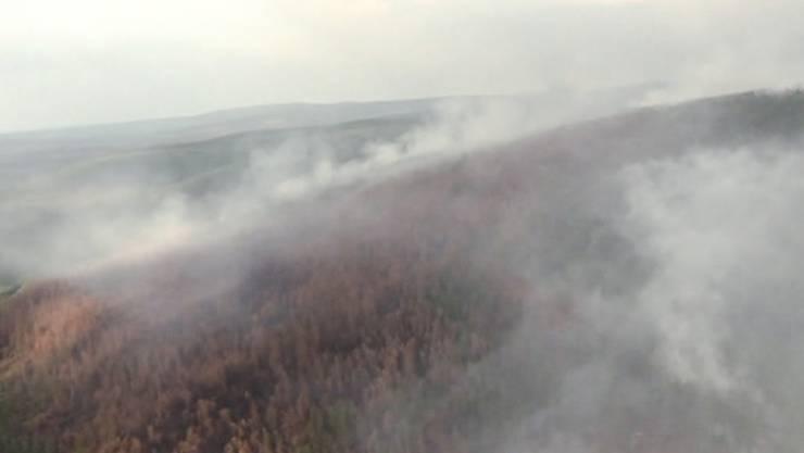 In der auch für das Weltklima wichtigen Taiga wüten die schlimmsten Bränden seit Jahren.