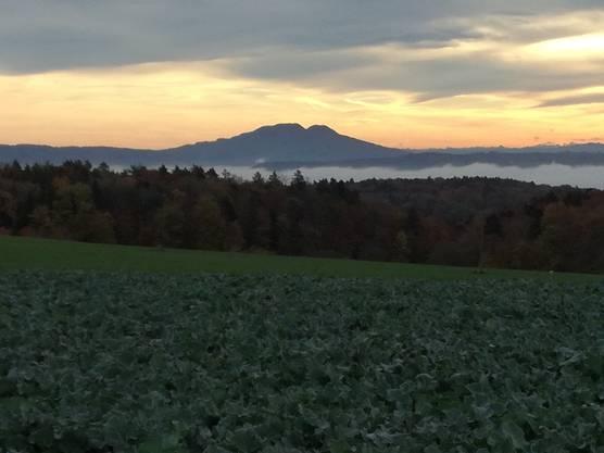 Blick vom Bözberg auf das Nebelmeer mit Lägern und Aaretal.