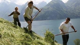 Bergbauern wenden das Heu teilweise noch immer von Hand.