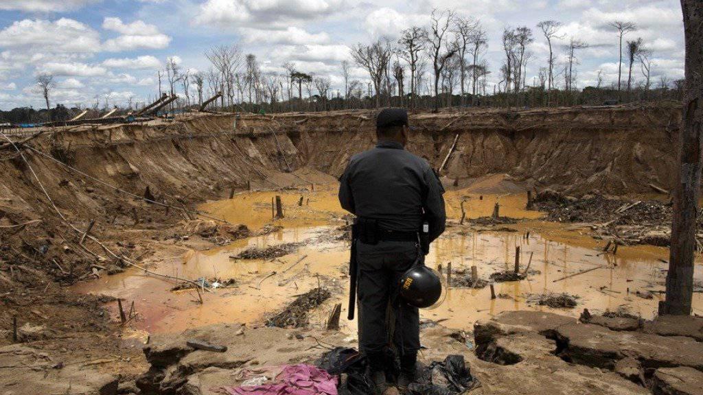 Ein Polizist betrachtet den Krater einer verlassenen Goldmine in Peru, zu deren Erstellung Waldbestände illegal abgeholzt worden waren. Während in Europa und Asien die Wälder wachsen, schrumpfen sie laut UNO in Afrika, Nord-, Mittel- und Südamerika sowie in Ozeanien weiter (Archiv)