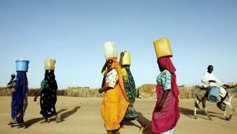 Frauen tragen Wasser im Tschad (Symbolbild)