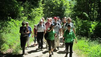 Leserwandern: die Königsetappe von Ehrendingen nach Baden
