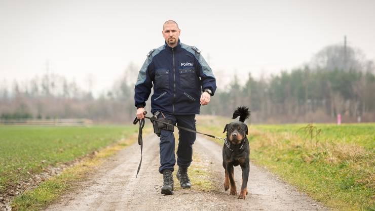 17 Monate alt ist der Rottweiler Gysmo, der mit vollem Zuchtname Gysmo vom Holzbrünneli heisst. Sein Herrchen ist Wachtmeister Niedermann von der Polizei rechtes Limmattal. Er bildet Gysmo zum Polizeihund aus.