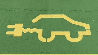 Gerade mal 5408 neue Elektroautos wurden im vergangenen Jahr bei den Strassenverkehrsämtern der Kantone angemeldet.